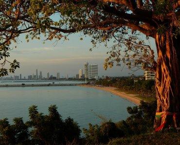 Thailand spirit trees