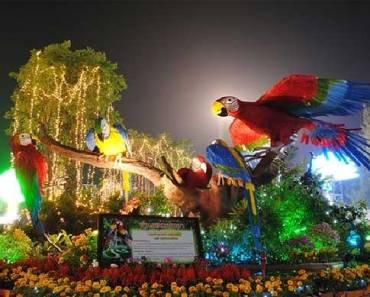 Straw Bird Fair 2016 Thailand