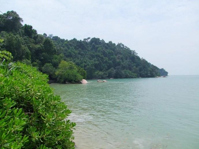 penang national park malaisie