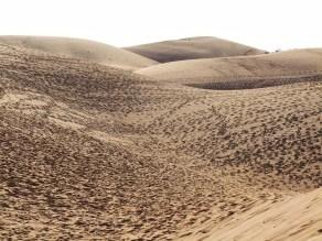 mui ne - dunes rouges - vietnam 14