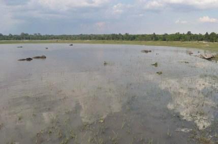 lac tortue savannakhet laos