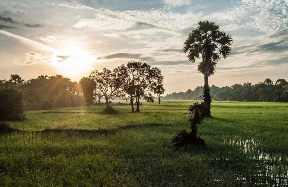 cambodge siem reap 2014