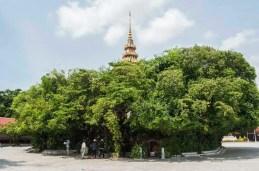 Palais Royal Phnom Penh