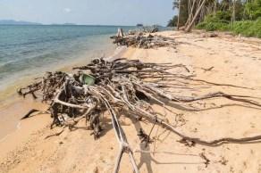 plage île cerfs koh kradat