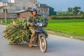 moto nord vietnam