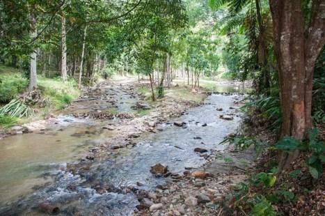 Thung Song - Namtok Yong National Park