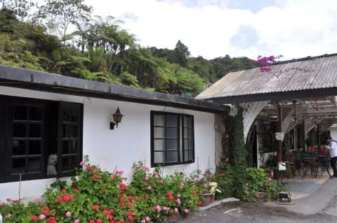 hotel-cameronian-inn-cameron-highlands