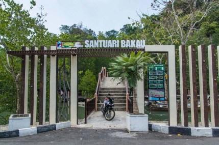 mangrove kilim geoforest park langkawi - malaisie