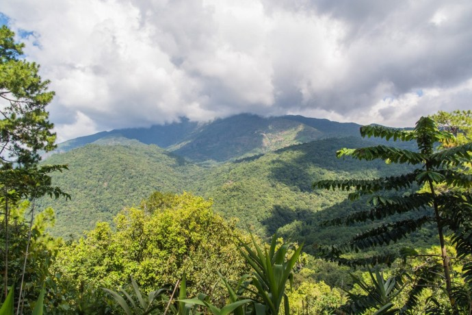 montagne doi inthanon - chiang mai