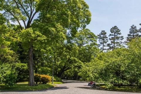 jardin palais imperial kyoto