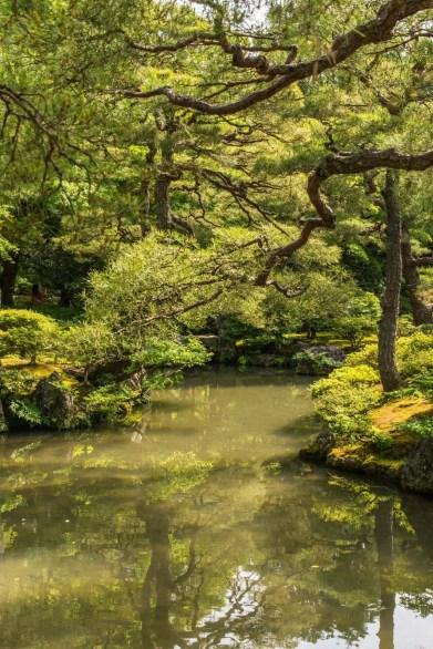 jardin temple ginkaku-ji pavillon argent - kyoto