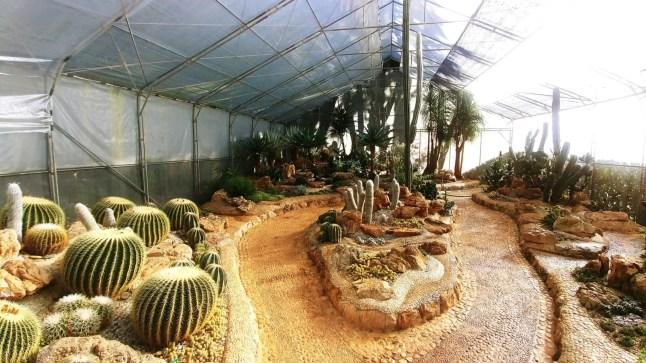 ang khang agricultural station - thailande