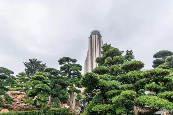 dans les jardins nan lian - hong kong