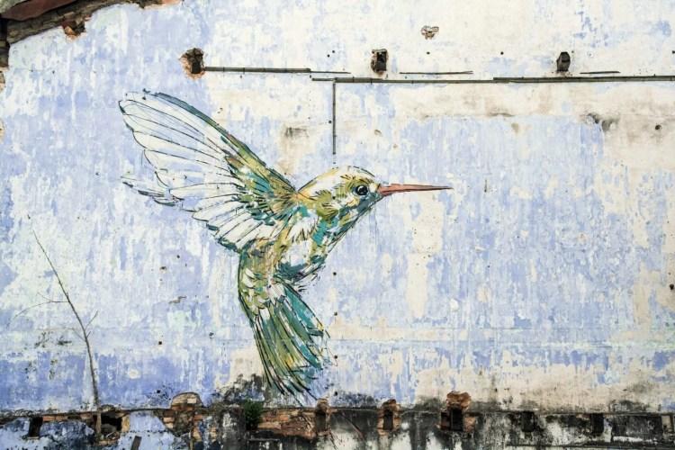 peinture murale hummingbird ipoh - malaisie