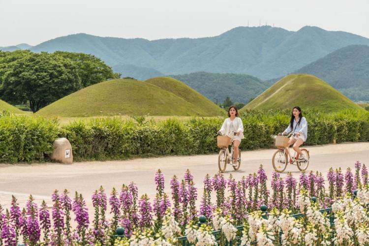 paysage a velo gyeongju coree du sud