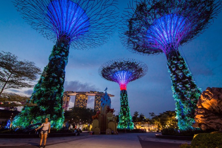 gardens by the bay de nuit - singapour
