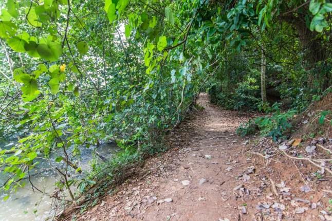 sentier sensory trail pulau ubin singapour