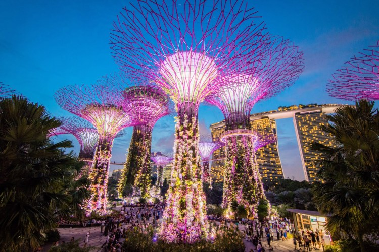 spectacle lumieres gardens by the bay nuit - singapour