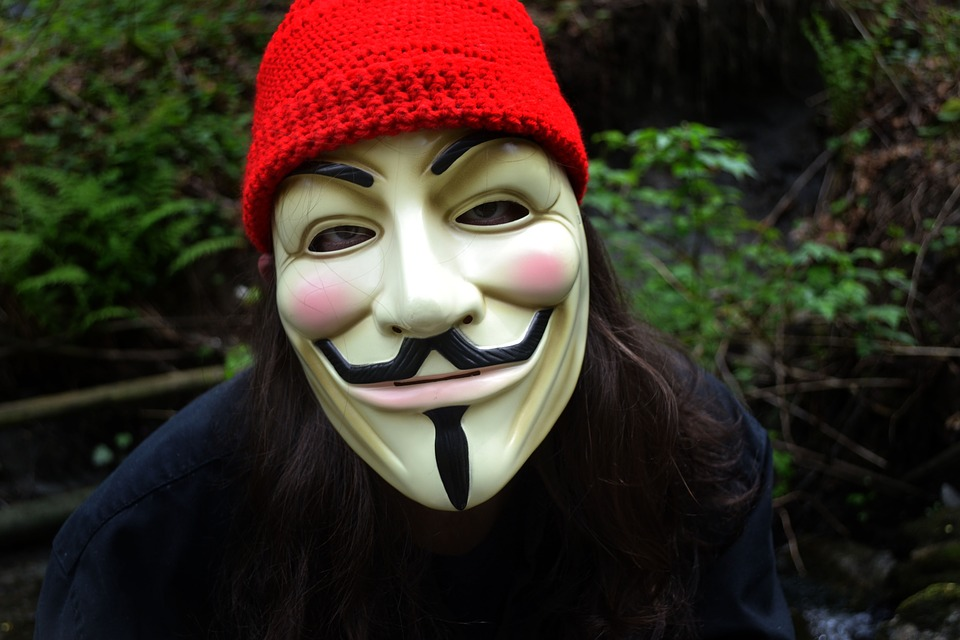 Guy Fawkes vendetta mask