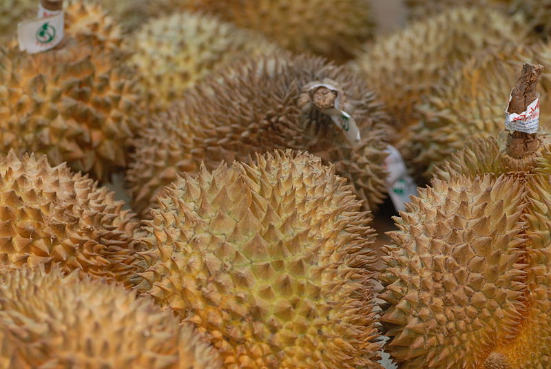 Durian fruits (Durio zibethinus)
