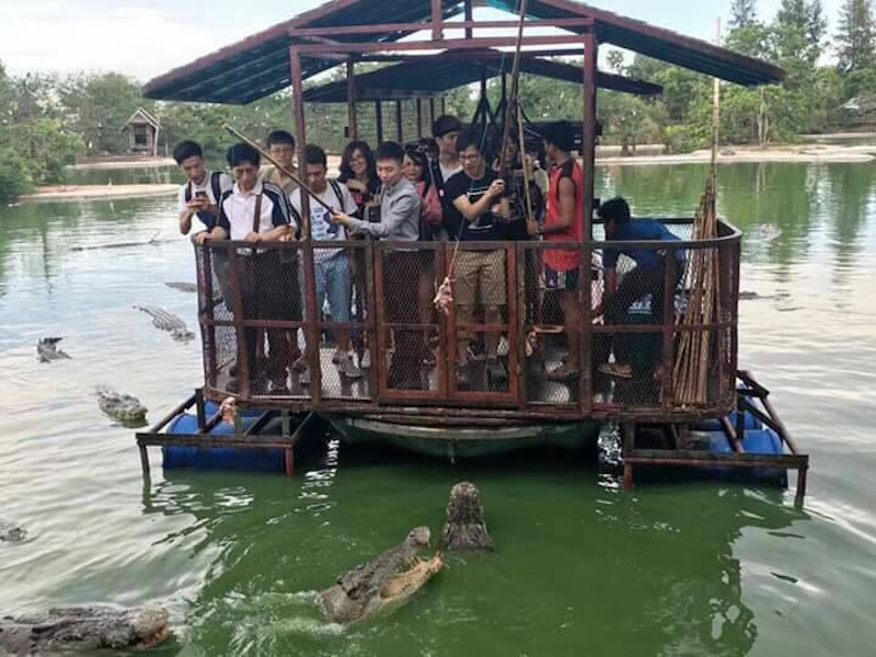 Chinese tourists feeding crocodiles at Illegal crocodile farm in Pattaya