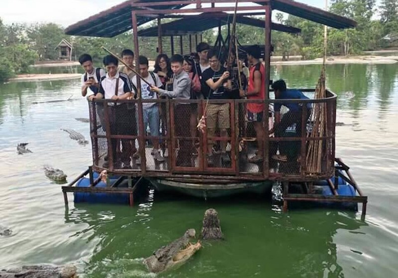 Chinese Tourists Tempt Fate For Crocodile-Baiting Fun