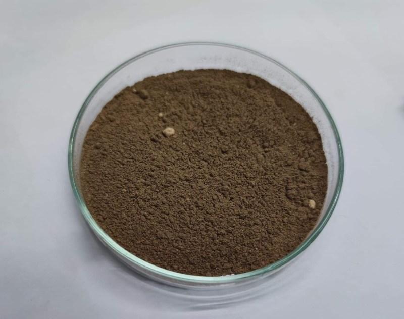 Powder Thai Phellinus mushrooms