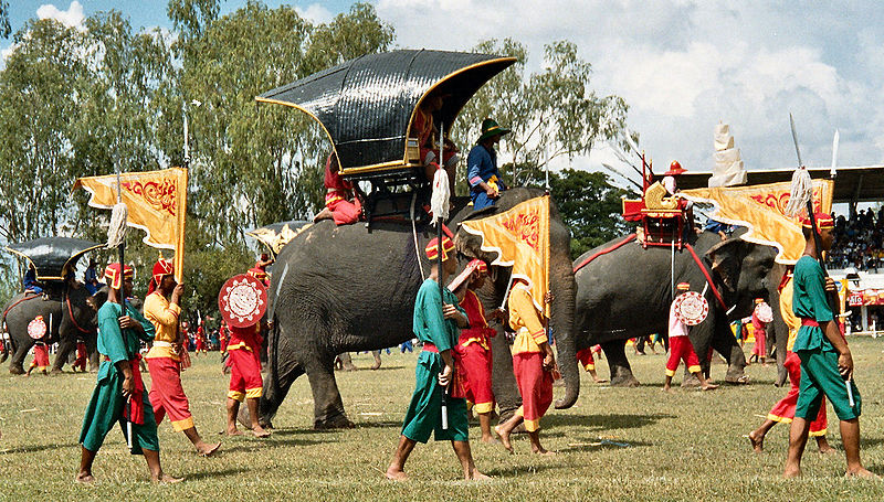 Over 160 Elephants Parade ahead of Surin Elephant Round-Up