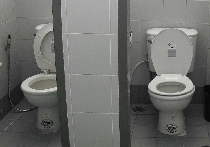 Cambodian worker nabbed for alleged toilet stall theft from Chinese tourist