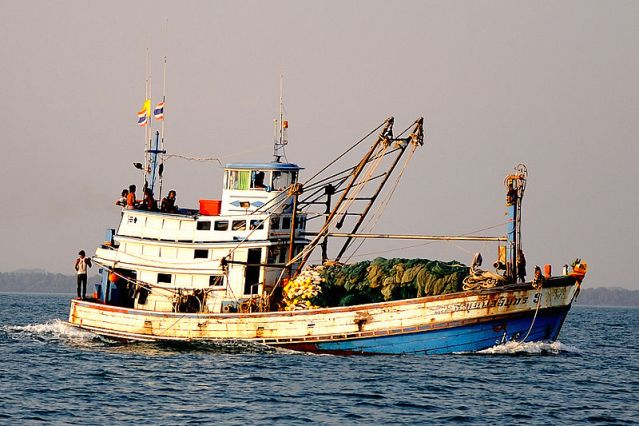 Illegal fishing boats depletes fish in Similan Islands