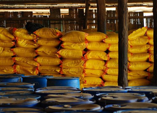 Rice at at the Mae La Refugee Camp in Thailand