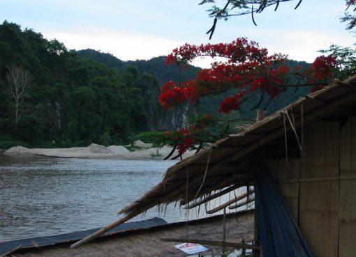 River in Chiang Rai