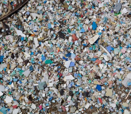 Plastic pollution and garbage