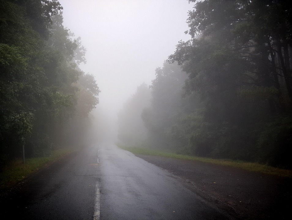 Road with dense fog