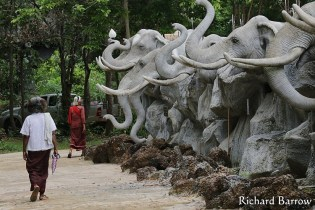 Elephant Village in Surin