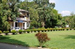 McKean Alzheimers Care, Thailand