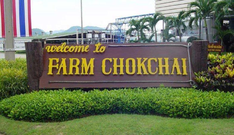 Chokchai Farm in Khao Yai