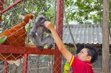 safari_park11