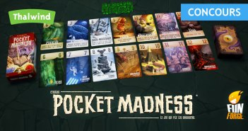 Concours Pocket Madness