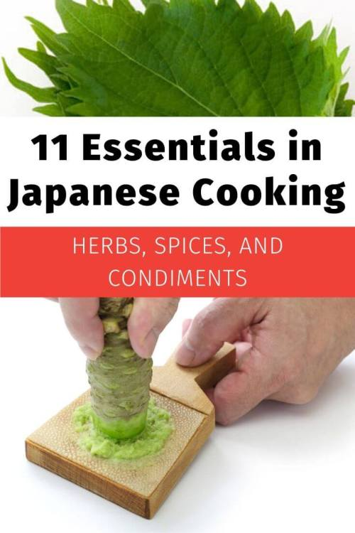Japanese essentials Herbs Spices Condiments