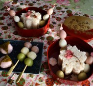Hanami Bento picnic at home