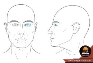 كيف ترسم وجه المرأة و وجه الرجل بشكل صحيح كالمحترفين