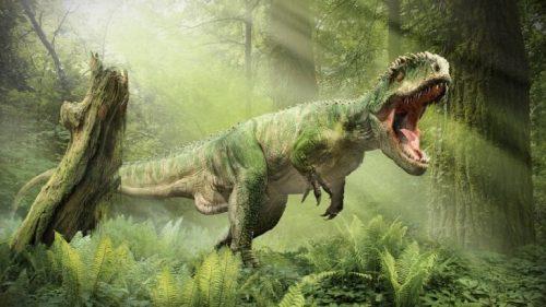 اضخم 10 كائنات عاشت على الارض 6