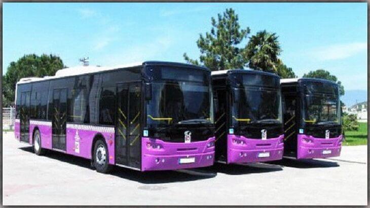 تفسير رؤية الحافلة أو الباص في المنام معلومة ثقافية