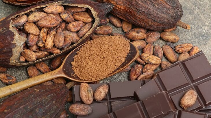 Benefits and damages of cocoa to pregnant and fetus Benefits and damages of cocoa to pregnant and fetus