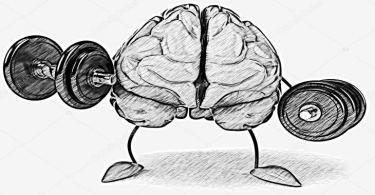 9 أطعمة تساعد على تقوية الذاكرة والتركيز