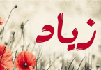معنى اسم زياد