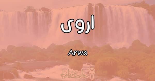 معنى اسم اروى Arwa وصفات حاملة الاسم
