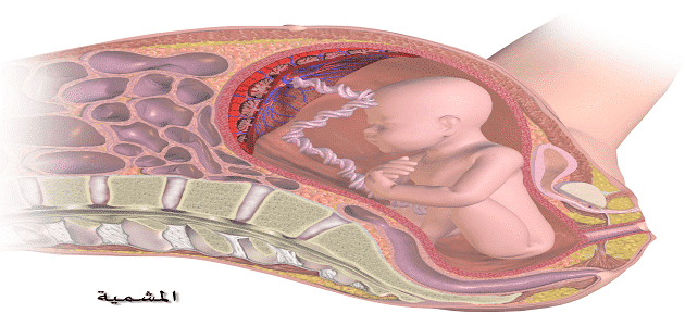 Symptoms of placental descent without blood Symptoms of placental descent without blood