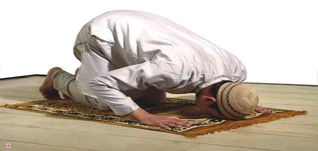 7 ادعية للهداية إلى الصلاة والتوبة عن المعاصي